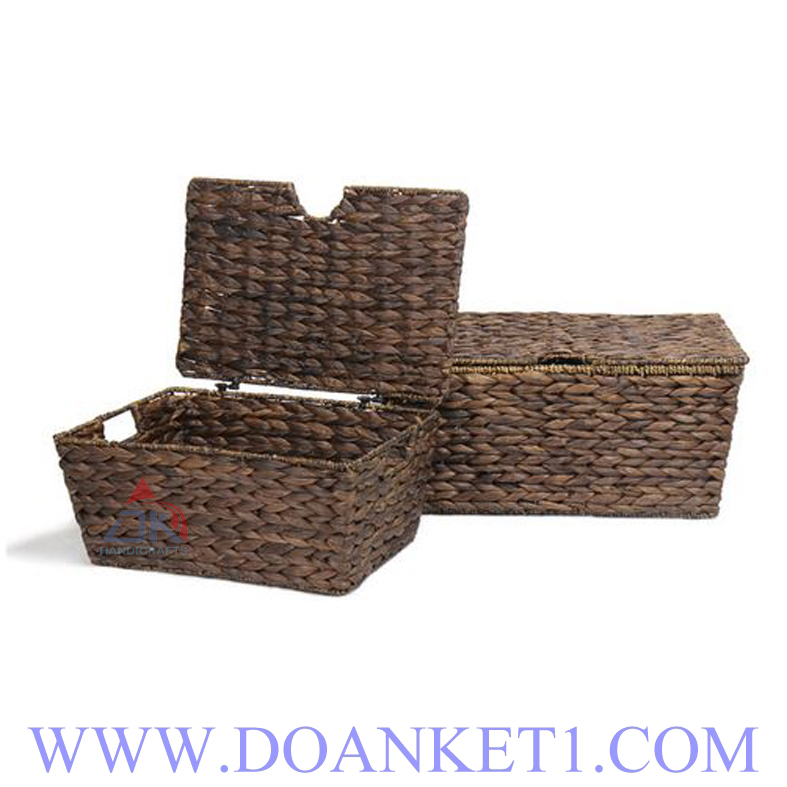 Water Hyacinth Basket With Lid S/2 # DK341
