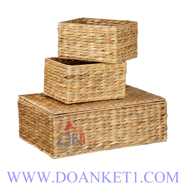 Water Hyacinth Basket With Lid S/3 # DK411